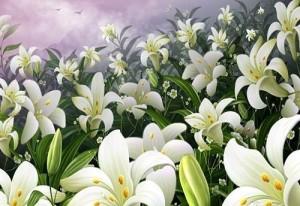 精选鲜花方案-0710