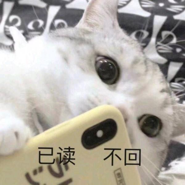 华为 P30 8GB+128GB 徕卡三摄 全面屏全网通手机